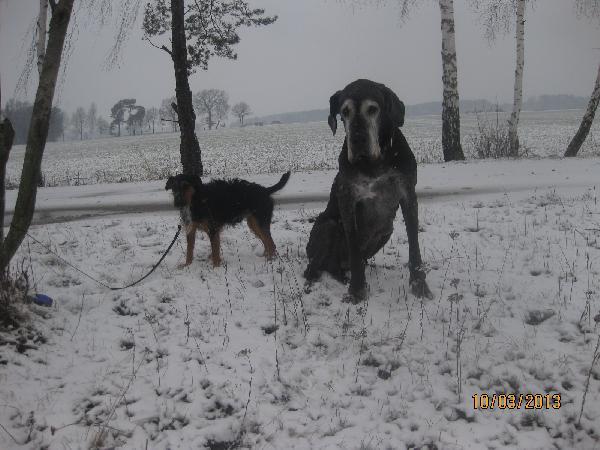 Oma Uxena mit ihrem Bodyguard Filou